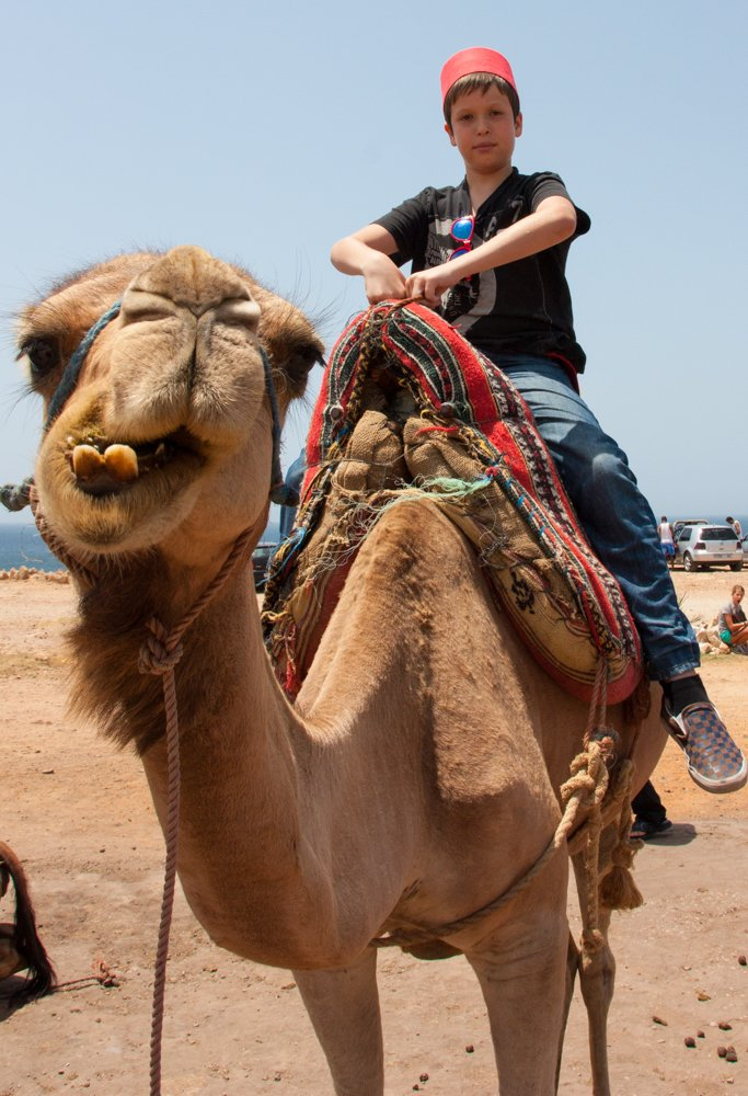 Tangier, Morocco ~ Camel Ride